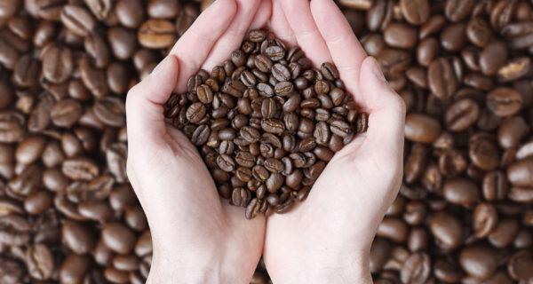 Fairtrade consumers values