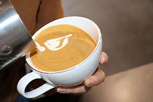 fairy rabbi latte art