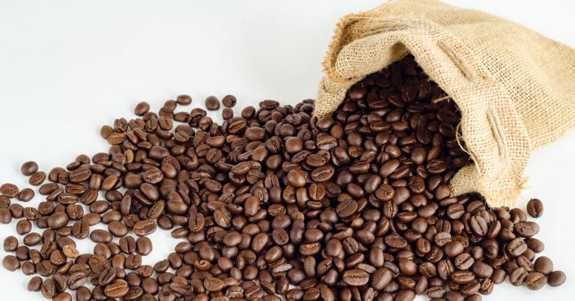 STARTING A coffee roastery