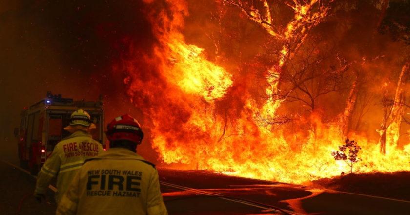 Australia bushfires coffee
