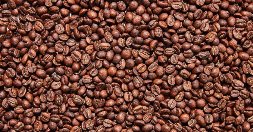 Royal Queensland Coffee Awards