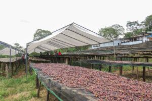 project origin ethiopia