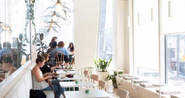 Leafe Café