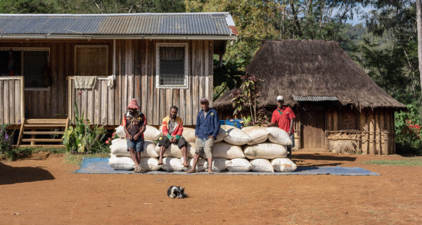 coffee producers adapt coronavirus