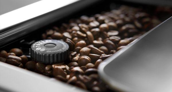 raw qualities of coffee