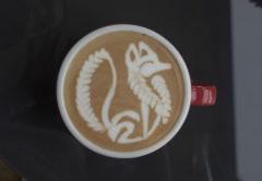 fox latte art jibbi little