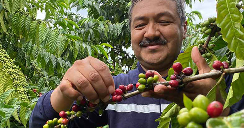 low carbon coffee varieties
