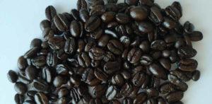 black beans vortx ecofilter